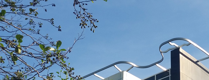 gevelliftservice Gevelonderhoudinstallaties Naaldwijk